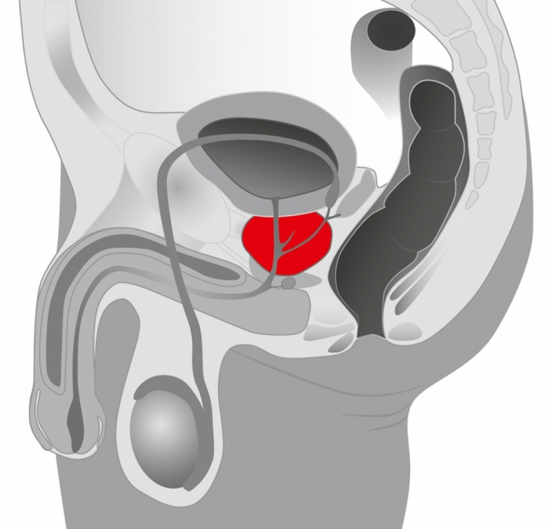 Массажер простаты / Booster Prostate Vibrator